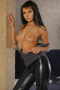 Viewpornstars Fantasy Babes Leather Pants